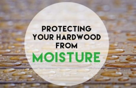 protecting hardwood from moisture rhodes hardwood minneapolis