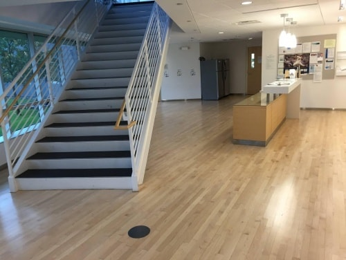 coloplast minneapolis floor resurfacing