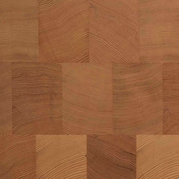 hemlock end grain